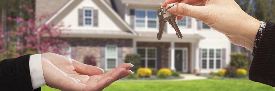 Servizi immobiliari per tutte le tue esigenze